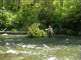 McCloud River offers some of the best trout fishing in northern California!